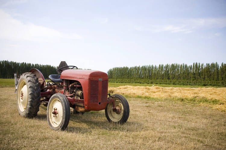Momento Cambio Aceite Tractor