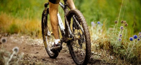 Mantenimiento Bicicleta Aflojatodo